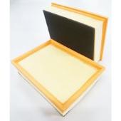 PA76233 Vzduchový filtr